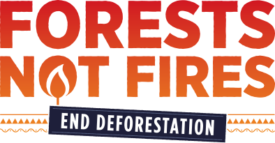 Forests not Fires